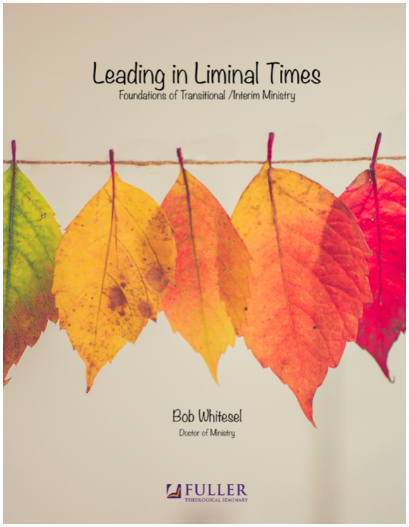 LD722 ©Whitesel - COVER ART Leading in Liminal Times Fuller Theological Seminary Course.png