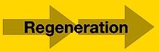7Systems Regeneration Arrows.jpg